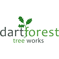 DartForest.png