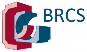BRCS (building control).png