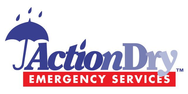 Action Dry