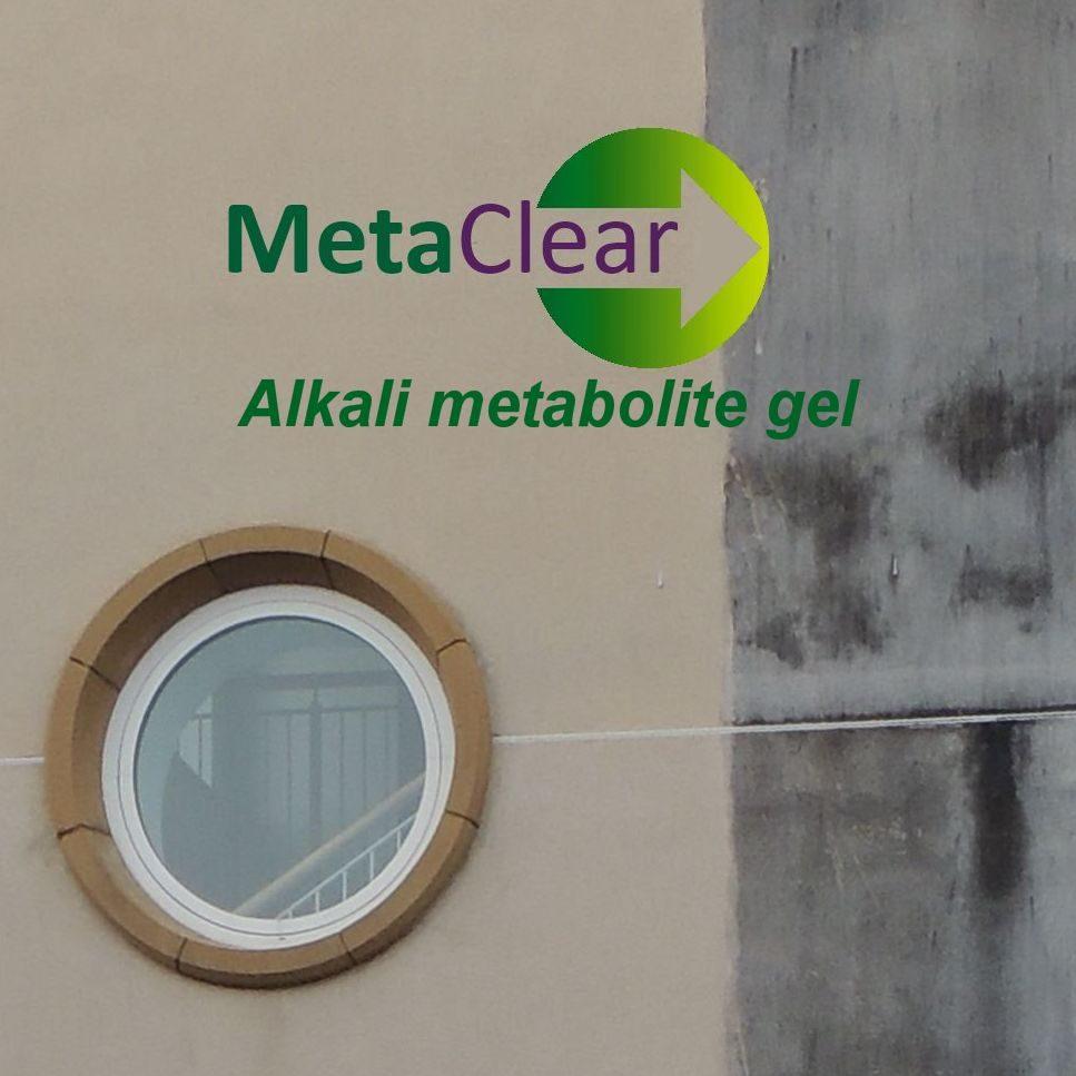 MetaClear2.JPG