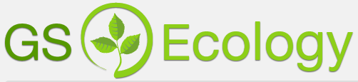gs ecology large logo.png