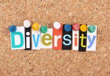 diversity for BIM