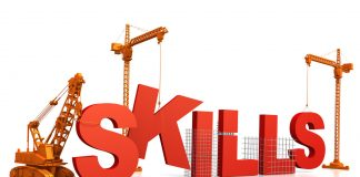Professional Development skills