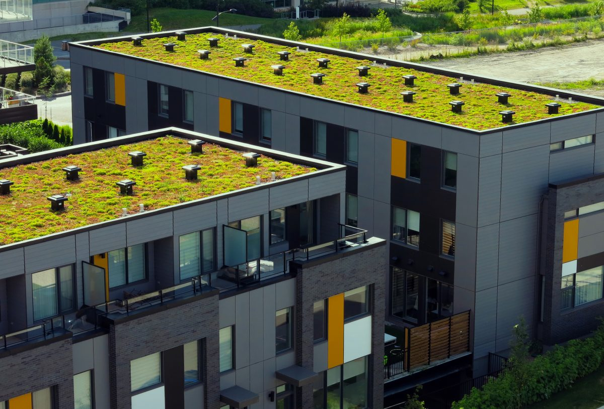Green roofs and the future of urban green infrastructure - Build green roof nature home ...