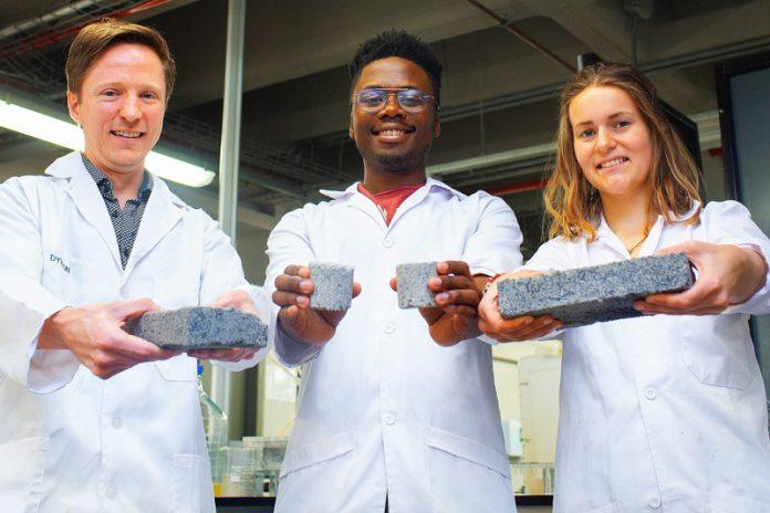 bio-brick