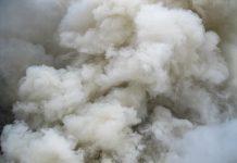 smoke toxicity
