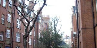 planning permission, Sutton estate, Social housing,