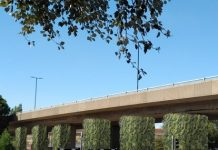 hydroponic living wall, Balfour Beatty Living Places, Highways Scheme,