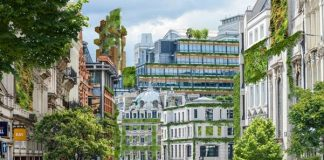 eco-friendly cities, urban greenery