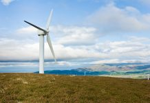 carbon neutral by 2020,