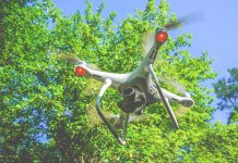 aerial photography, woodland management,