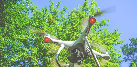 aerial photography, woodland management,