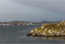 Falkland Islands port, BAM Nuttall