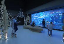 reefLIVE aquarium