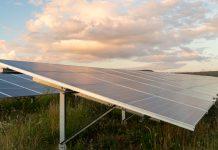 Solar farm, EDF