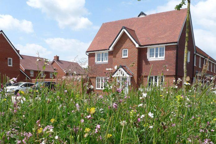 Housebuilding industry, biodiversity