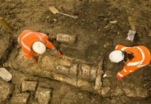 hs2 archaeologists,