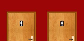 Accessible loo, loo access, toilet