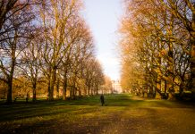 London green space,